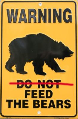 feed_bear