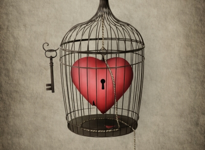 heart cage