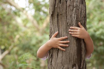 young-child-hugging-a-tree-in-the-forest-example-of-vertical-leading-lines-in-photography
