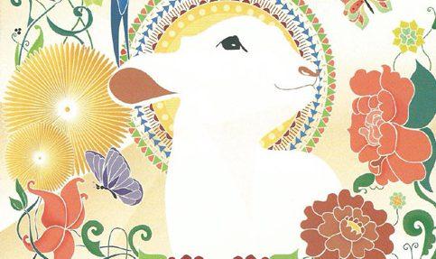 copertina-agnello-ridotta